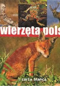 Barbara Ćwikowska - Zwierzęta Polski