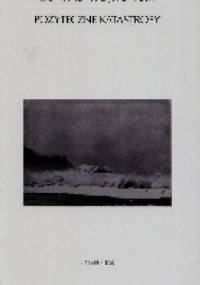 Konrad Wojnowski - Pożyteczne katastrofy