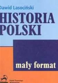 Dawid Lasociński - Historia Polski /pigułka