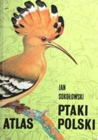 Jan Sokołowski - Ptaki Polski