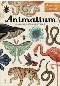 Jenny Broom - Animalium. Muzeum Zwierząt