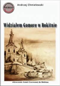 Andrzej Chmielewski - Widziałem Gomorę w Rokitnie.