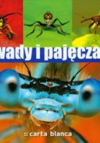 Michał Grabowski - Owady i pajęczaki